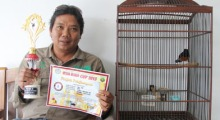 Jhonlin Group, Kalimantan Selatan, Batulicin, Lomba burung, Kicau mania, h isam